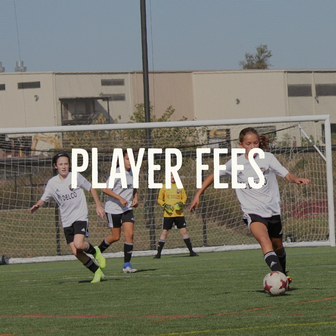 Player Fees